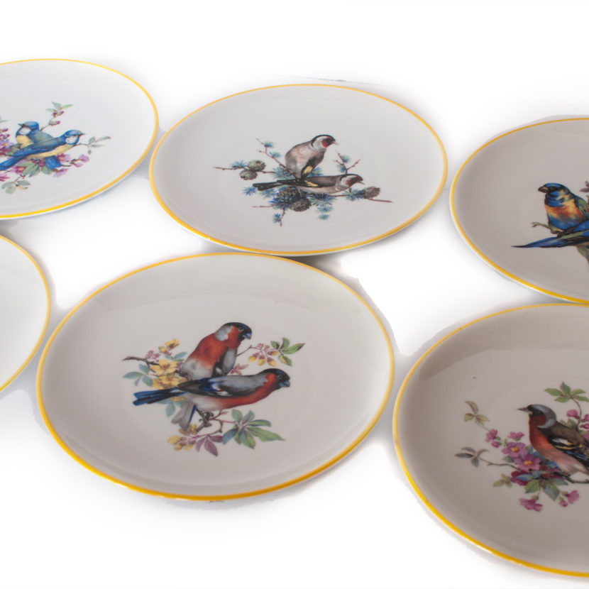 all six bird plate images