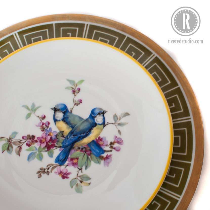 blue yellow bird plate