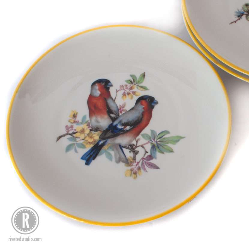 rust blue bird plate