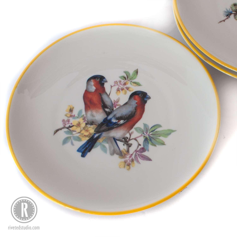 rust blue bird plate