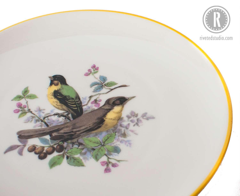 yellow green bird plate