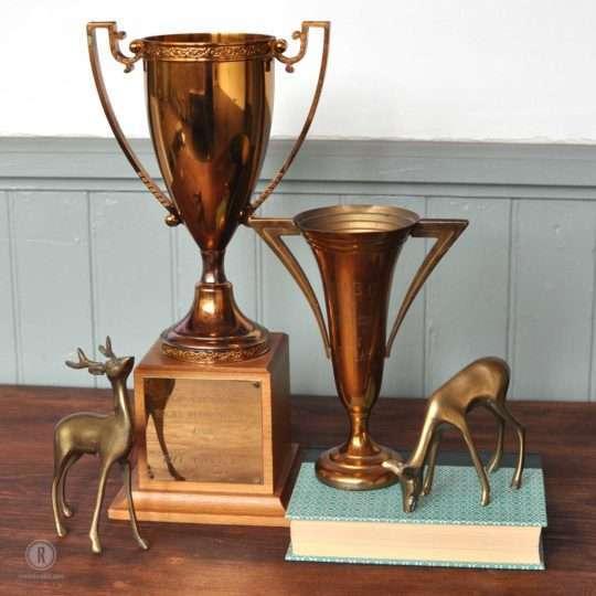 trophies-and-deer